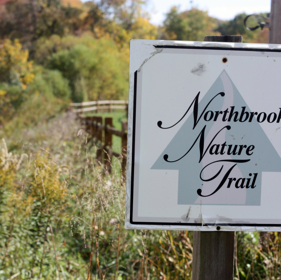 Landscape Lighting Northbrook: Northbrook Community Association
